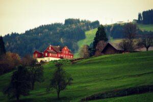 Se ti piace una casa, comprala prima che l'acquisti un'altra persona.